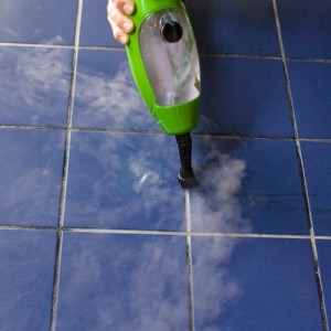 h2o steam cleaner